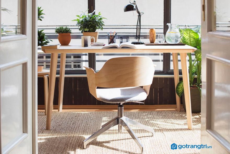 Cây cảnh phong thuỷ cho bàn làm việc